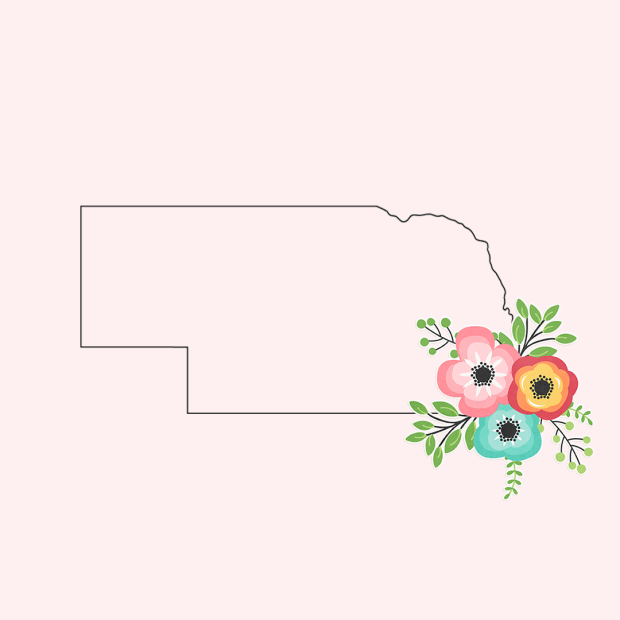 NebraskaFlower.png